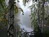 The early morning on the Owl Creek (arthurverigin) Tags: morning siberia russia calmness forest fog birch creek river stillness dawn twilight landscape ubravnets