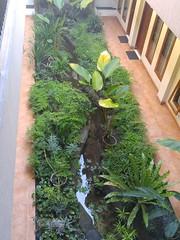 Java Yogyakarta Hotel 20171217_070521 LG (CanadaGood) Tags: asia asean seasia indonesia indonesian java javanese yogyakarta yogya jogja building canadagood 2017 thisdecade color colour specialregionofyogyakarta centraljava