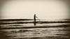 DSC_3617bw sepia (Roelofs fotografie) Tags: wilfred roelofs nikon d5600 zee sepia sea seaside seafront see water wave 2018 photoshop picture fotgrafie foto outdoor
