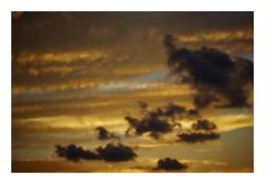 untitled (kouji fujiwara) Tags: sonynex7 sony nex7 sky skyscape cloud cloudscape yellow pentaxfa43mmf19limited pentax fa43mmf19 43mm f19 limited