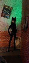 Feline Fine (MaxxieJames) Tags: catwoman selina kyle dc dcu barbie mattel doll collector gotham diorama custom customised batman dolls ooak