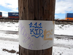 211 Kid (Railroad Rat) Tags: freight train riding hopping graffiti monikers art railroad dumpster diving camping reclaim traveling wander america united states union pacific culture high desert snow feather river route overland
