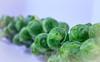 Brussels Sprouts (Lindsay Feldner) Tags: 2018 culinary brusselssprouts cruciferous macro vegetables eat your veggies keto ketolife ketowoe green fresh organic