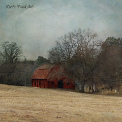 The old barn (Kerstin Frank art) Tags: barn old djurgården stockholm trees texture kerstinfrankart tree sky grass road forest