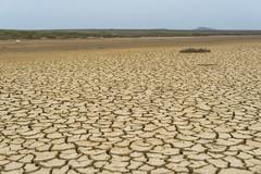 Opuk national reserve. Crimea. (Khuroshvili Ilya) Tags: pattern lake salt opuk crimea horizon dry