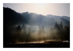 Morning sun...and spring haze #1 (kouji fujiwara) Tags: fujifilm x fujifilmxt2 xf1655mmf28 xf1655mm f28 spring haze morningsun shiluet silhouette sunlight landscape landschaft