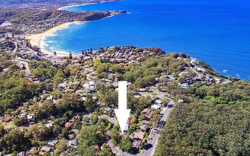 3 Cabbage Tree Av, Avoca Beach NSW 2251