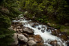 Rocky River (Rj_!) Tags: 2017 co colorado colorado2017 denver denver2017 mountevans mtevans