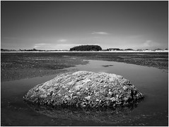when the tide goes out (kurtwolf303) Tags: tide gezeiten ebbe föhr germany deutschland landscape seascape water sky lowtide fels rock reflection spiegelung monochrome bw sw blackwhite olympusem1 omd microfourthirds micro43 horizont horizon systemcamera mirrorlesscamera mft kurtwolf303 meer ocean sea