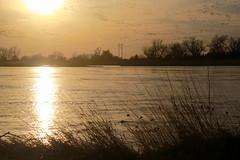 Sunset on the Platte (RPahre) Tags: kearney nebraska sunset platteriver crane sandhillcranes