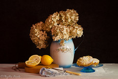 Still life with lemon crumb cakes (Phyllis Freels) Tags: phyllisfreels blue crumbcakes enamel flowers fruit glass hydrangea indoor knife lemon napkin pitcher stilllife tablecloth tabletop vintage while wood yellow