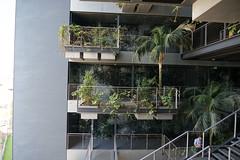 2018-04-FL-183535 (acme london) Tags: barcelona corridor fira hotel jeannouvel landscape planting renaissancehotelfira spain