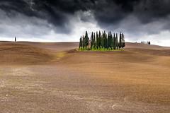 San Quirico d'Orcia 2 (SLpixeLS) Tags: italy italie tuscany toscane toscana landscape paysage soil agriculture minimal minimalism tree arbre cypress cyprès sky ciel cloud nuage cloudy nuageux storm stormy tempête sanquiricodorcia dramatic dramatique bestcapturesaoi platinumheartaward