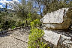 Mallorca20180417-08639 (franky1st) Tags: spanien mallorca palma insel travel spring balearen urlaub reise escorca illesbalears