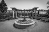 Carlsbad Fountain (juliolunap) Tags: outdoors outside out architecture archilovers architectureporn architecturelovers archi architecturephotography carlsbad california eeuu usa sandiego garden flowers flower flowerlovers flowerporn symmetry symmetrylovers symmetryporn symmety bnw bnwphoto bnwphotography black blackandwhite blackwhite blackandwhiteporn blackwhitephoto blackwhitephotography white