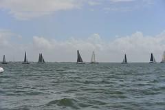 LOX_3838 (Lox Pix) Tags: australia queensland brisbanetogladstone yachtrace catamaran trimaran 2018 bossracing multihull loxpix moretonbay shorncliffe cabbagetreecreek rudder aground sailing loxworx