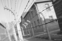 Auschwitz I (8de3.com) Tags: alfonsovalle 8de3com barmaceutiko barmacia barmacéutico barmacéutiko drbarmacéutiko drbarmaceutiko blackandwhite polonia cracovia poland krakow pologne cracovie polska kraków פולין קרקוב polen krakau oświęcim oswiecim אושוויינצים nazismo auschwitz campodeconcentración campodeexterminio nazism concentrationcamp exterminationcamp konzentrationslagerauschwitz nazisme campdeconcentration campdextermination nazizm obózkoncentracyjny obózzagłady nationalsozialismus konzentrationslager vernichtungslager auschwitzbirkenau arbeitmachtfrei letravailvousrendlibre pracaczynicięwolną eltrabajotehacelibre holocausto holocaust holokaust holocauste השואה שואה shoah bw bnw byn blancoynegro monocromático hierro iron ferro feralambrada wirefence clôturedefil cercadearame