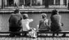 Nucléaire. (Canad Adry) Tags: paris canal saint martin carl zeiss planar t cy 50mm f14 famille family noir et blanc black white girl boy parents dad mom child children sit enfant
