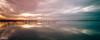 Un día más... (Francisco Chornet) Tags: atardecer ocaso puestadesol albufera humedales parquesnaturales lago laguna mornells gaviotas aves paisaje landscape valencia comunidadvalenciana españa a7 sonystas sony fe1635f4
