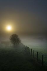 Valado na néboa (Leon F. Cabeiro) Tags: sony a7r a7rii ii fe 24105 oss galiza galicia raris teo fog mist neboa sunrise mencer