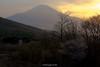 富士山 Mt.Fuji (Masayuki Nozaki) Tags: mtfuji fujisan fujiyama mountain sakura spring sky cloud landscape japan sony α7r2 ilce7rm2 mc11 富士山 桜