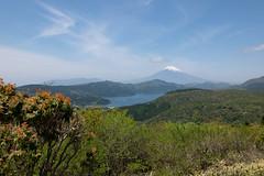 Mt.Fuji and lake Ashinoko (Okera) Tags: 18mm 2018 elmarit leicacl ツーリング