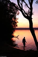 Nakło-Chechło - 2012 (Tomek Szczyrba) Tags: lake jezioro woda water nature przyroda sunset shadow cień zachód słońca scenery krajobraz polska poland silhouette sylwetka landscape