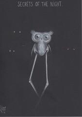 Secrets of the night. (Klaas van den Burg) Tags: species humor owl longlegs eyesphotagrafy