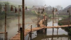 Sapa Cat Cat Village walkway (Gilama Mill) Tags: mist catcat tribe village pond water sapa landscapes street travel vietnam
