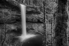 The South, Ansel Style (Ian Sane) Tags: ian sane images thesouthanselstyle black white monochrome ansel adams south falls silver state park sublimity silverton oregon landscape nature photography long exposure waterfall canon eos 5ds r camera ef1740mm f4l usm lens