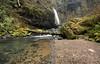 Easter Seclusion (gwendolyn.allsop) Tags: pnw drift creek falls waterfall outdoors hike water oregon