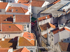 Portugal 2017-9021159-2 (myobb (David Lopes)) Tags: 2017 allrightsreserved europe nazare portugal architecture buildingexterior buildingstructure copyrighted day daylight highangleview outdoor roof rooftile smalltown sunlight touristattraction townscape traveldestination vacation village ©2017davidlopes