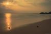 _SSS9508.jpg (S.S82) Tags: nature beach landscape sunset longexposure india westernghats karnataka padu seascape kapubeach evening sea ss82 landscapephotography ocean seashore landscapecaptures kaup in