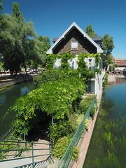 Green Entrance (madbesl) Tags: strasburg elsass elsas alsace frankreich france europa europe strasbourg altstadt oldtown grün green olympus omd em10 m10 omdem10 zuiko1250