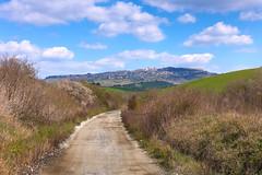 verso Volterra (lotti roberto) Tags: toscana volterra tuscany italy italia path sentiero