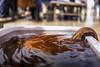 Mercato del pesce di Aspra - (PA) (ettorelomb) Tags: fish aspra palermo colors sicily market sicilia colori octopus polpo italy