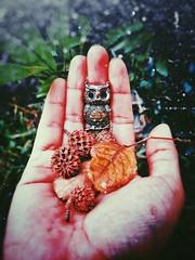 ○● Me gusta tomar fotografías para poder recordar, pues la mayoría de las veces soy como un caldero vacío cuando se trata de recuerdos.●○ (ivethmendez86) Tags: art arte vintage retro old life magic bokeh beautiful nice buho macro
