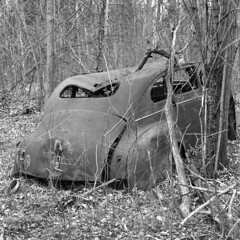 Trunk of an Old, Decaying Plymouth (pmvarsa) Tags: spring 2018 analog bw blackandwhite film 120 mf 6x6 mediumformat ilford ilfordfp4plus fp4 125iso nikonsupercoolscan9000ed nikon coolscan cans2s mamiya c33 mamiyac33 classic camera tlr twinlensreflex mood rust car chrysler plymouth decay abandoned derelict auto body trunk boot wheel well trees leaves forest woods trail moraine art waterloo ontario canada