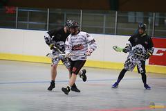 Aleš Hřebeský Memorial 2018, Day 3 (LCC Radotín) Tags: fotomartinbouda radotín memoriálalešehřebeského ahm alešhřebeskýmemorial lacrosse 2018 boxlakros lakros boxlacrosse