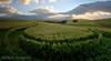 Wet Winter Wheat (Panorama Paul) Tags: paulbruinsphotography wwwpaulbruinscoza southafrica westerncape overberg greyton wheatfield sunrays nikond800 nikkorlenses nikfilters panorama