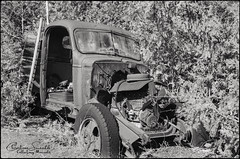 McLeans Auto Wreckers (Christine Smeath) Tags: auto wrecked cars ontario rural rust