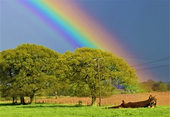 Awesome Rainbow (simon.redfern1) Tags: rainbow colour rainyday sunshine nature landscape spectrum
