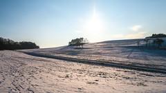 Winter in Huisheim (Tobias Keller) Tags: backlight bavaria bayern deutschland gegenlicht germany heimat huisheim landkreisdonauries landschaft schnee schwaben swabia winter home landscape geo:lon=10696193 geocountry camera:make=panasonic exif:isospeed=160 geostate geocity geolocation exif:focallength=14mm camera:model=dmcg5 exif:lens=lumixgvario1442f3556 exif:aperture=ƒ80 geo:lat=4882298 exif:model=dmcg5 exif:make=panasonic lumixgvario1442f3556 panasonicdmcg5