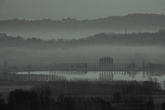 Melancholic (andbog) Tags: sony alpha ilce a6000 sonya6000 emount mirrorless csc sonya oss sel nature natura landscape paesaggio panorama layers hill sonyα sonyalpha canavese to piedmont piemonte candia countryside campagna overlook fog mist foschia italia italy morning monochrome biancoenero bn bw blackandwhite it sony⍺6000 sonyilce6000 sonyalpha6000 ⍺6000 ilce6000 apsc field campo country winter inverno 55210mm sel55210 lake lago trees alberi