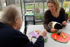 DXO_0437 (villedebernay) Tags: bien vieillir bernay solidarité forum sophrologie être santé retraite résidence autonomie