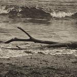 Varada en la playa II thumbnail