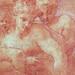PRIMATICE - Hylas retenu par les Nymphes (drawing, dessin, disegno-Louvre INV8523) - Detail 043