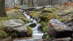 NB-8.jpg (neil.bulman) Tags: countryside longshawestate longexposure peakdistrict nature nationalpark derbyshire longshaw flowingwater rocky water flowing rocks derbyshiredalesdistrict england unitedkingdom gb