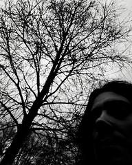 Tan solo pedí o raíces o alas, ahora me han crecido en la espalda ramas que me impiden levantarme (Josu Sein) Tags: selfportrait selfie autorretrato monochromemonocromo josusein cinematic cinemático backlight backlighting contraluz surrealism surrealismo trees árboles ramas branches expressionism expresionismo