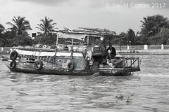 Mekong Delta (CATDvd) Tags: catdvd davidcomas httpwwwdavidcomasnet httpwwwflickrcomphotoscatdvd september2017 cộnghòaxãhộichủnghĩaviệtnam repúblicasocialistadevietnam repúblicasocialistadelvietnam socialistrepublicofvietnam việtnam vietnam nikond70s rio riu river deltadelmekong đồngbằngsôngcửulong mekongdelta landscape paisaje paisatge barca boat portrait retrat retrato